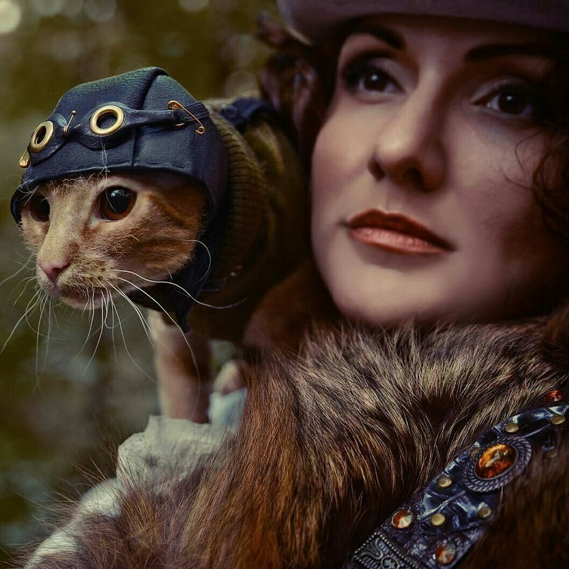 steampunk photo cat